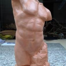 torso1
